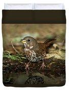 Fox Sparrow Drinking Duvet Cover