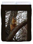 Fox Squirrel 1 Duvet Cover
