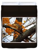 Fox Squirrel In Autumn Duvet Cover