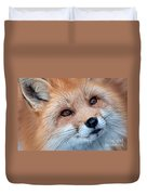 Foxy Lady Duvet Cover by Bianca Nadeau