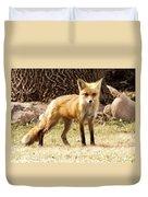 Foxy Momma Duvet Cover
