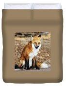 Foxy Duvet Cover by Shane Bechler