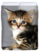 Foxy The Kittens Big Eyes Duvet Cover