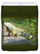 Framed Iguana Duvet Cover
