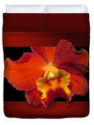 Framed Red Orchid  Duvet Cover