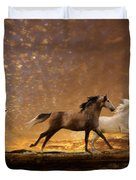 Freed Spirits Duvet Cover