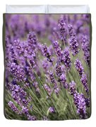 French Lavender Duvet Cover