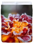 French Marigold Named Durango Red Outlined With Frost Duvet Cover