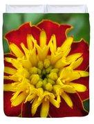 French Marigold Named Solan Duvet Cover