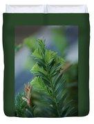 Fresh Growth Redwood Duvet Cover