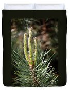 Fresh Pine Sprouts Duvet Cover