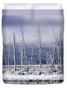 Fresh Snowfall And Bare Trees Duvet Cover