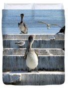 Pelican Friends Duvet Cover