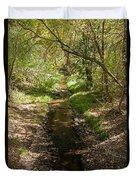 Frijole Creek Bandelier National Monument Duvet Cover