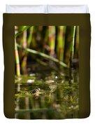 Frog Eyes Duvet Cover