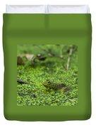 Frog In Swamp 2 Of 3 Duvet Cover