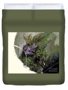 Frog On Moss On Wall Duvet Cover
