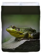 Frog Outcrop Duvet Cover