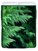 Fronds Of The Leyland Cypress Duvet Cover