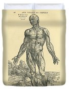 Front Of Male Human Body.anatomical Duvet Cover