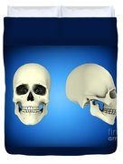 Front View And Side View Of Human Skull Duvet Cover by Stocktrek Images