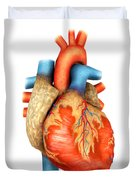 Front View Of Human Heart Duvet Cover by Stocktrek Images
