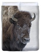 Frosty Morning Bison Duvet Cover