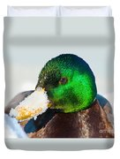 Mallard On Ice Duvet Cover