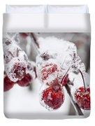 Frozen Crab Apples On Snowy Branch Duvet Cover