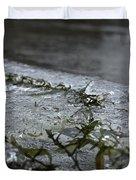 Frozen Milfoil Duvet Cover