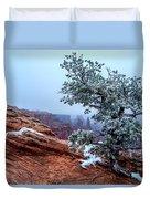 Frozen Overlook Duvet Cover