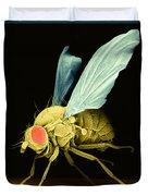 Fruit Fly Sem Duvet Cover