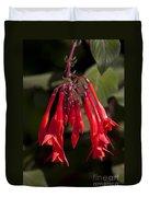 Fucshia Red Flower Duvet Cover