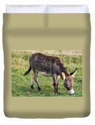 Full Grown Donkey Grazing Duvet Cover