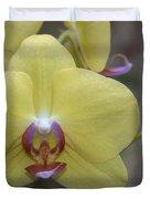 Fuller's Sunset Orchid Duvet Cover