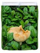 Fungus Among The Ajuga Duvet Cover