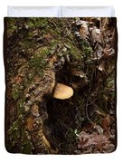 Fungus In Stump Hole Duvet Cover