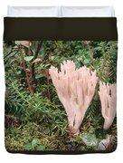 Fungus On Forest Floor Alaska Duvet Cover