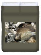 Fur Seal Duvet Cover