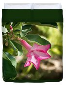 Fushia Oleander Near Phoenx Arizona 1 Duvet Cover by Douglas Barnett
