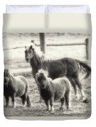 Fuzzy Ponies Duvet Cover
