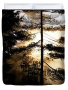 Fv5423, Perry Mastrovito Sunrise Though Duvet Cover