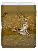 Gadwall Drake In Flight Duvet Cover