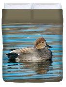 Gadwall Duck Drake Swimming Duvet Cover