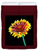 Gaillardia Arizona Sun Duvet Cover