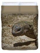 Galapagos Giant Tortoise Duvet Cover