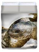 Galapagos Giant Tortoise V2 Duvet Cover