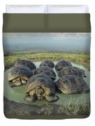Galapagos Giant Tortoises Wallowing Duvet Cover