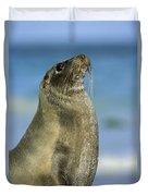 Galapagos Sea Lion Coral Beach Duvet Cover