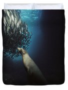 Galapagos Sea Lion Pup Fishing Duvet Cover